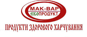 big_logotype